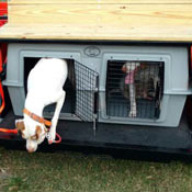 Two dogs in an Easy Loader Kennel under the seat of a Bird Dog Buggie